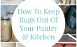 Hoe te houden van de Bugs uit uw Pantry en keuken
