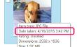 Hoe herken ik de datum uw foto's werden genomen op een iPhone
