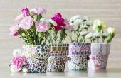 Hoe meet je de afmetingen & maten van bloempotten