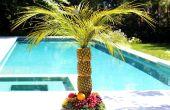 Hoe maak je een ananas palmboom voor een dienblad