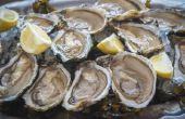 Tekenen en symptomen van voedselvergiftiging van schaal-en schelpdieren
