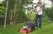 Hoe prijs van gras snijden