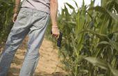 Texas wetten over het schieten van een kanon van BB