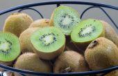 Hoe te het uitdrogen van de kiwi 's