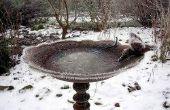 Hoe maak je een bad Winter vogel