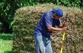 How to Fix achtertuin Water afvoer problemen