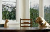 Bouwplannen voor een hond krat eindtafel