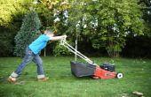 De Best beoordeelde Push grasmaaiers