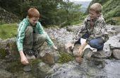 Hoe kan ik het opbouwen van een Dam met stenen Creek?