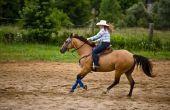 Het gebruik van paard Tie-Downs