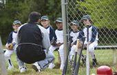 Lijst van goedgekeurde vleermuizen voor Little League