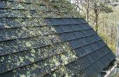Hoe te verwijderen van dak Moss