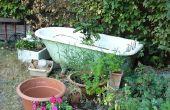 Hoe groenten groeien in een bad