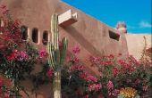 Hoe te doen woestijn Landscaping