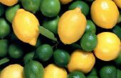 Hoe maak je een zoete & zure Mix met vers Fruit