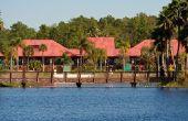 Wat Is de gemiddelde Florida overstroming verzekering tarief?