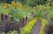 Hoe breed Is de weg van een tuin?