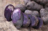 How to Grow een paarse aardappel