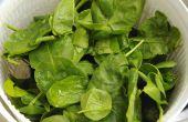 Wat soorten salade Dressings zijn goed op spinazie?