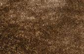 Hoe Patch een gat in het tapijt