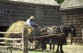 Rituelen in de Amish stadia van het leven