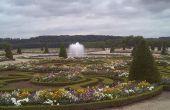 Planten in de tuinen van Versailles