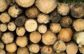 Het behouden van onbehandeld hout biologisch