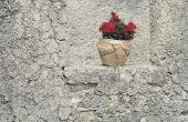 Hoe om te zetten uw Plant potten te lijken steen