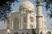 Lijst van bomen van Noord-India