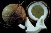 Wat betekent het als een kokosnoot ruikt aan Alcohol?