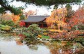 Elementen van een Zen-tuin & hun betekenis