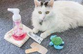 Hoe schoon kat krassen