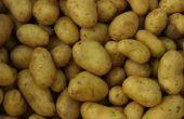 Kan ik oude aardappelen in mijn Compost stapel zetten?