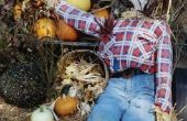 Hoe maak je een gemakkelijk Scarecrow voor Kids & kinderen