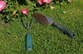 How to Plant bloemen in North Carolina