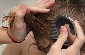 Hoe de behandeling van hoofdluis