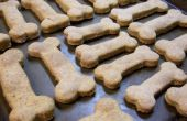 Hoe maak je zelfgemaakte hond Snacks