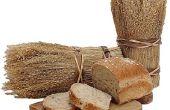 Is brood schimmel goed of slecht voor de mens?