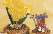 Hoe maak je eetbare rijstpapier vlinder decoraties