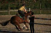 Release & Hold onschadelijk overeenkomst voor paarden activiteit in Texas