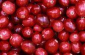 Hoe om te koken van Cranberries in de magnetron