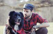 Hoe de zorg voor een hond met de Neuritis