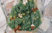 Hoe maak je kaneel appelmoes Kerst ornamenten