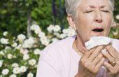 Hoe lang allergie laatste seizoen?