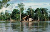 Wat te Pack voor een Amazon Rainforest Trek