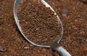 How to Grow Mushrooms in koffie gronden