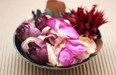 How to Make Potpourri uit gedroogde bloemen