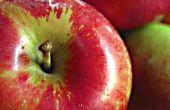 Biologische appel Cider azijn Vs. gepasteuriseerde appel Cider azijn