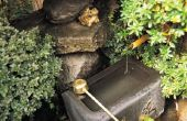 Hoe met azijn schoon algen van buiten fonteinen