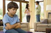 How to Raise van kinderen met een vijandige Ex-echtgenoot